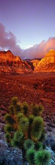 King of the Desert Panorama by Peter Lik