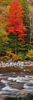 Monarch Panorama by Peter Lik