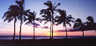 Waikiki Palms, Hawaii Panorama by Peter Lik - 0