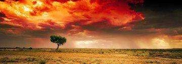 Dreamland (InnamIncka, South Australia) Panorama by Peter Lik