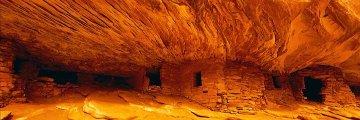 Fire Rock (Cedar Mesa, Utah) AP Panorama by Peter Lik