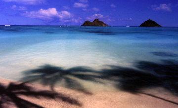 Island Hideaway (Lanikai, Oahu, Hawaii) 1.5M Huge  Panorama - Peter Lik