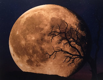 Bella Luna Panorama by Peter Lik