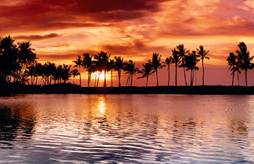 Evening Tide Panorama by Peter Lik