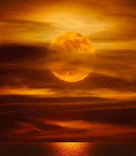 Moonlight Reflections (La Jolla, CA) 1.5M  Panorama - Peter Lik