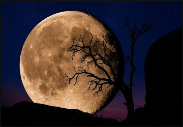 Bella Luna Panorama - Peter Lik