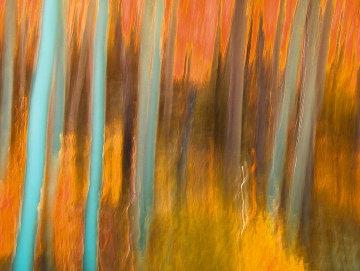 Forever - Huge Panorama - Peter Lik