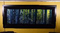 Endless Birches Colorado AP 2M Huge Panorama by Peter Lik - 3