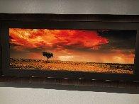 Dreamland (InnamIncka, South Australia) 2.M Super Huge Panorama by Peter Lik - 1