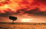 Dreamland (InnamIncka, South Australia) 2.M Super Huge Panorama by Peter Lik - 0