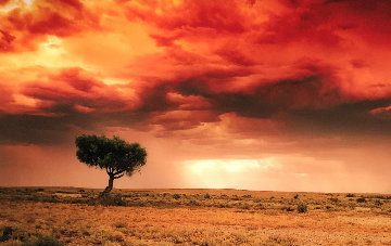 Dreamland (InnamIncka, South Australia) Panorama by Peter Lik