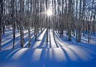 Sunlit Birches (Telluride, Colorado) Panorama by Peter Lik - 0