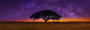 Celestial Dreams Panorama by Peter Lik