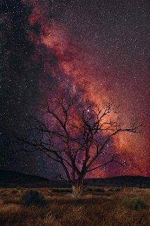 Stargazer Panorama - Peter Lik
