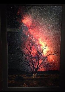 Stargazer Panorama by Peter Lik