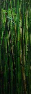 Emerald Forest 2M  Huge Panorama - Peter Lik