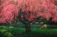 Tree of Dreams (Washington State) Panorama by Peter Lik - 1