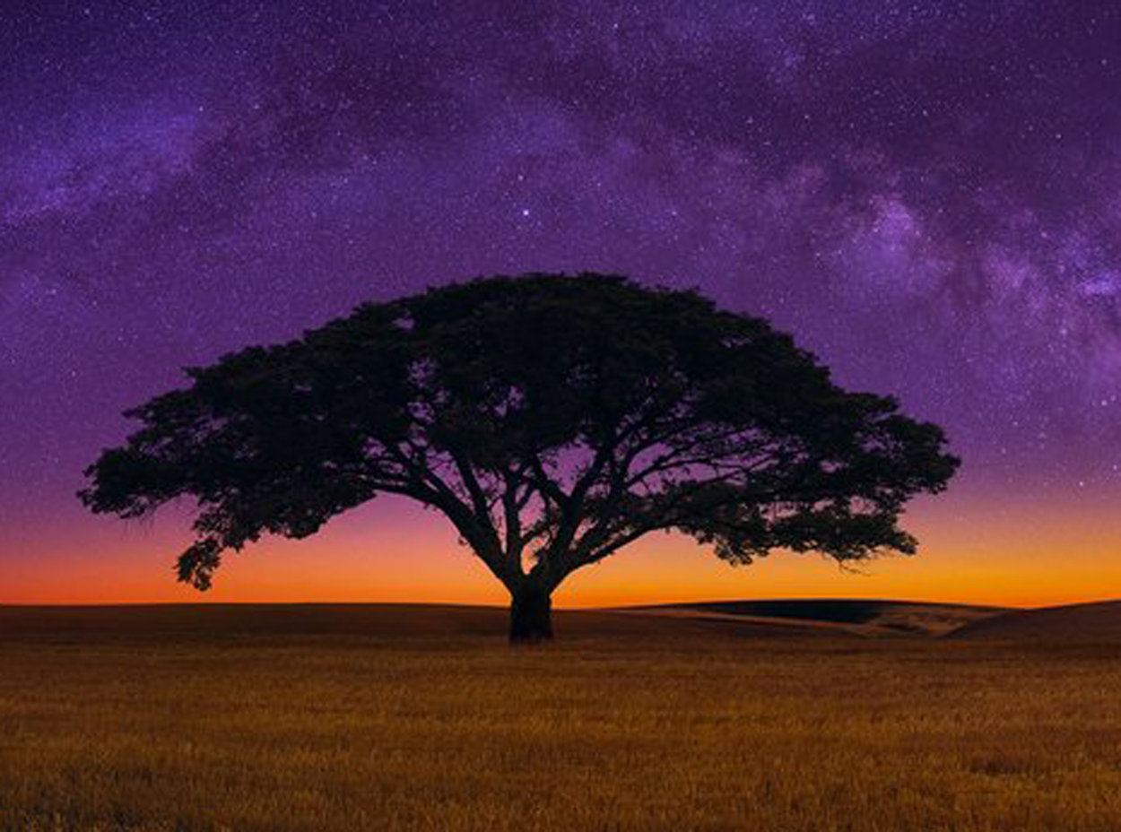 Celestial Dream 2M Super Huge! Panorama by Peter Lik