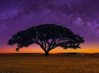 Celestial Dream 2M Super Huge! Panorama by Peter Lik - 0