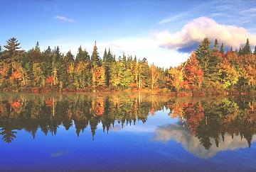Fall Reflections  Panorama - Peter Lik