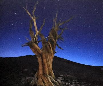 Starry Night  Panorama - Peter Lik