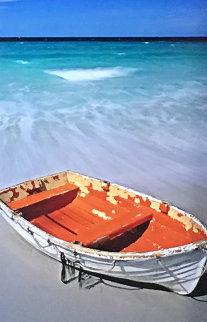 Shipwrecked Panorama - Peter Lik