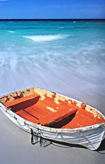 Shipwrecked Panorama by Peter Lik