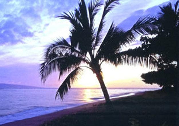 Island Escape (Baby Beach, Maui, Hawaii) Panorama by Peter Lik