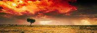 Dreamland AP  Innamincka, South Australia 1.5M huge Panorama by Peter Lik - 0