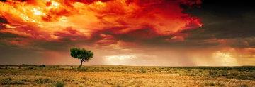 Dreamland AP  Innamincka, South Australia  Panorama - Peter Lik