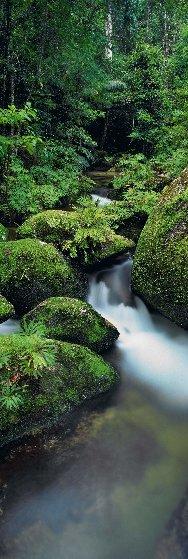 Hidden Falls Panorama by Peter Lik
