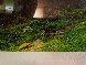 Hidden Falls Panorama by Peter Lik - 1