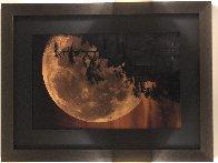 Moonlit Dreams Panorama by Peter Lik - 1