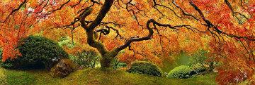 Tree of Zen 2M Super Huge Panorama - Peter Lik