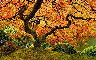 Tree of Zen 2M Super Huge Panorama by Peter Lik - 0