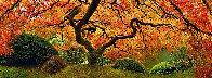 Tree of Zen 2M Super Huge Panorama by Peter Lik - 1