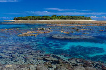 Coral Island  (small ed 100) (Lady Musgrave Island, Great Barrier Reef 1,5M Huge Panorama - Peter Lik