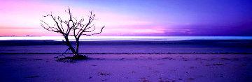 Solitude  Panorama by Peter Lik