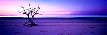 Solitude  Panorama - Peter Lik