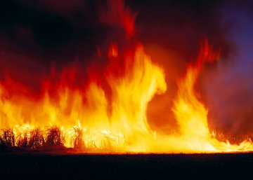 Firedance Super Huge! Panorama - Peter Lik
