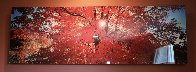 Morning Star 1.5M Huge! Panorama by Peter Lik - 1