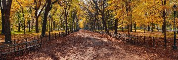 Central Park Panorama - Peter Lik