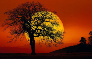 In Search of the Sun Panorama by Peter Lik