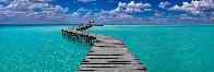 Island Dreams Panorama by Peter Lik - 0