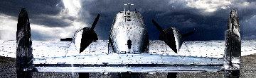 Twin Beech 1.5M Huge! Panorama - Peter Lik