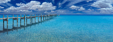Midsummer Dream Panorama - Peter Lik