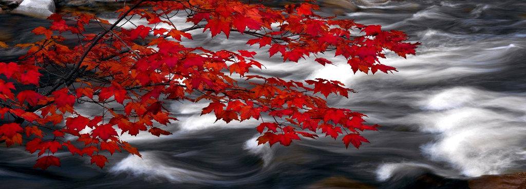 River of Zen Panorama by Peter Lik