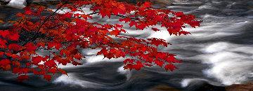 River of Zen Panorama - Peter Lik