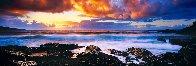 Genesis 1.5M Huge! Panorama by Peter Lik - 0
