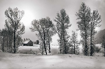 Christmas Morning 1.5M Huge! Panorama - Peter Lik